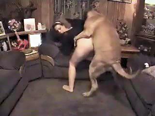 perro se coge a su dueña