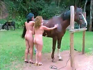 dos mujeres y un caballo