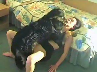 Perro Con Adolescente