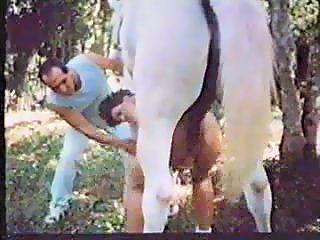 retro animal sex with horse