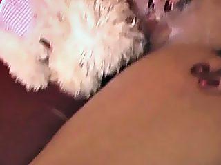 Poodle licking pussy glamorous girl