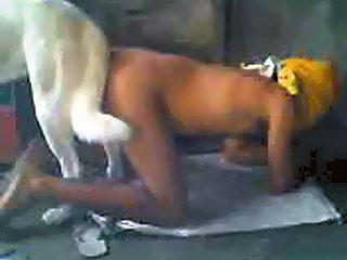 mit Hund