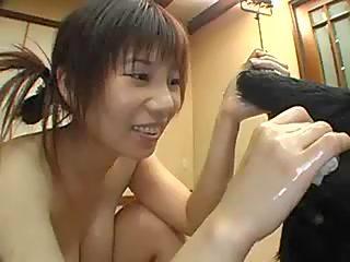 Japanise dog funs