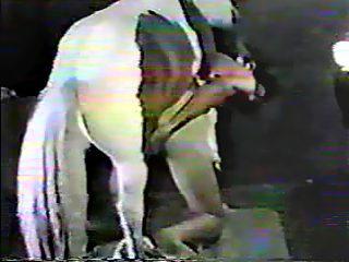 Man con Ponny