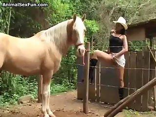 Horsecum4